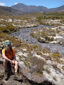 What looks like a black river is actually the remnants of the path of a glacier. Mt Tongariro is visible in the back.