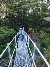 The bridge leading to the Waihohonu hut.