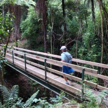 The pathway is well laid out with bridges over rivers and streams and steps where gradients are too steep.
