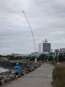Len Lye's Wind Wand - a landmark on the coastal walkway.