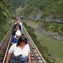 The Manawatu River quite far down.