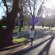 Running through the scenic Massey Campus.