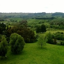 Running along the hills provide wonderful views of the valleys around Palmerston North.