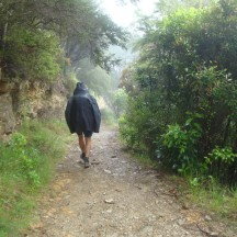 The wet and overcast weather of the last day made for a totally different walking experience to the first days of the hike.