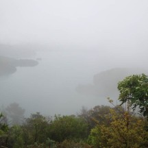 A wee bit of a view peeking through the mist.