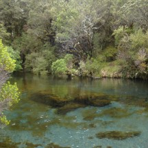 Ohinetonga Springs - beautiful clear water.