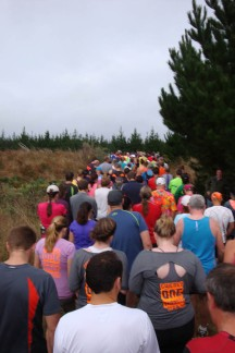 The huge field of runners being walked to the start.