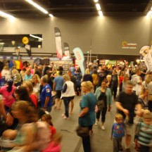 Busy crowds at the Expo.