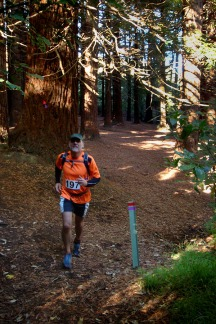 Gerry coming out the redwood forest.