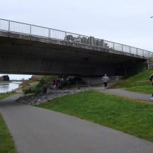 Passing under the Manawatu Bridge.