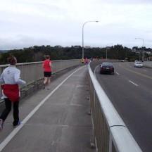 Crossing the Manawatu Bridge on our way to Massey Uni.