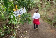 Run, in the Forest, Run!