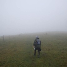 Very misty and cold on the ridges.
