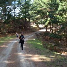 A rare mild downhill helping us regain our breath.