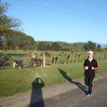 Running in rural Wairarapa.