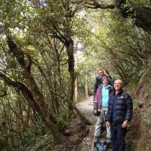 The last few kilometres through indigenous forest.