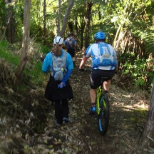 Dodging MTBs on narrow trails.