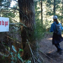 """""""Only"""" 55km to go."""