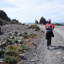 Making our way round the southern most tip of the North Island.