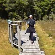 Crossing the wetland.