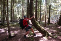 Johann bending trees. From now on we'll just call him Chuck Norris!