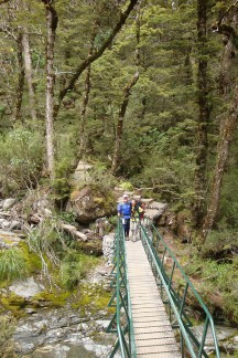Sturdy bridges ensuring there's no chance of wet feet.