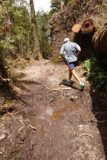 One of the very technical sections, with lots of roots, mud and uneven ground.