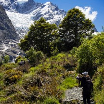 Snapping away. I sometimes wonder how many photos are taken per year in New Zealand. Must be millions! (© Gerry le Roux)
