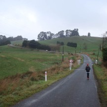 Beautiful scenery, albeit misty and miserable.