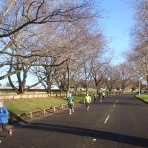 Beautiful tranquil Palmy on a lovely sunny morning.