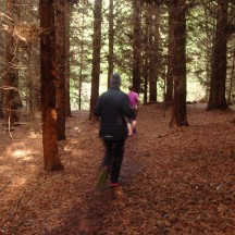 Through a redwood forest as the sun made a quick showing, before disappearing again.