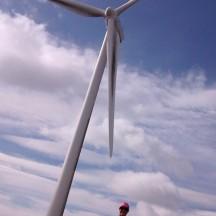 Cheryl still having fun in the windfarm.