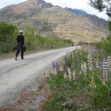 Around this area we passed some waterworks which wasn't all that pretty. But the lupins cheered me up.