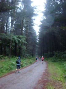 The wide forestry roads helped to spread out the runners.