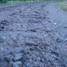 Frozen soil.