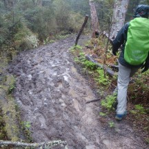 Muddy and slippery on the downhill.