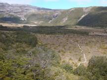 The wooden path leading towards Mangaturuturu Hut.