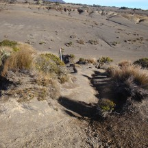 Wide sandy valleys are a feature of the final stretch towards the Waihohonu hut.
