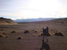 Early morning desert walk.