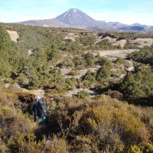 Heading down an eroded path as we hit a bushier section.