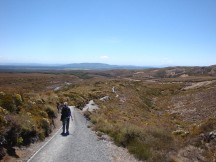 From the Tama Lakes to Whakapapa the path is a veritable highway.