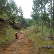 A downhill trot...