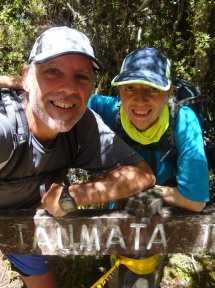 At Taumata trig, the highest point on the track at 572m (DOC) or 563m (nzwalksinfo.co.nz).