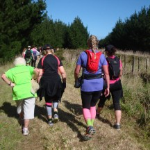 When we caught up with the 10 and 5km runners and walkers, the road got a bit congested, but didn't slow us down at all.