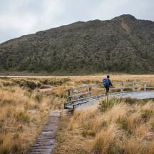 Crossing the Story River/Hangatahua Stream.