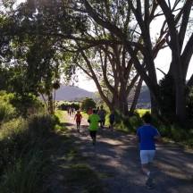 The Tararuas in the distance.