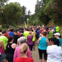 Quite a big field for this, one of the oldest parkruns in NZ.