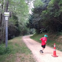 The halfway turn-around. Of the four different parkruns I've done, three of them have an out-and-back course.