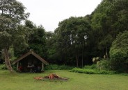 The Korokoro campsite and shelter.