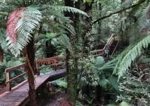 An elaborate walkway.